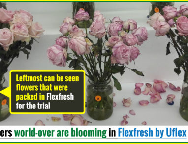 Flowers world-over are blooming in Flexfresh by Uflex