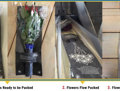 Uflex's Waterless Internet Flower Packaging adjudged Diamond Finalist Winner